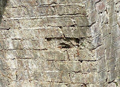Windsor Brick Damage